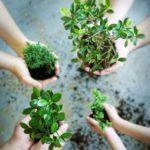 Творческие школьники Югры могут принять участие в конкурсе эколистовок