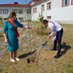 В Югре завершилась экологическая акция «Аллея выпускников»