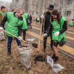 Выпускники Югры озеленят свои родные города